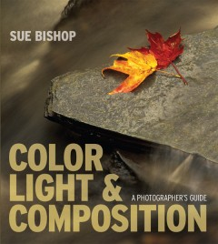 cover - Color_Light_Composition