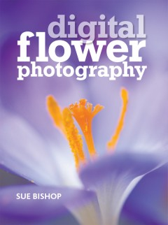 cover - digital flower photography